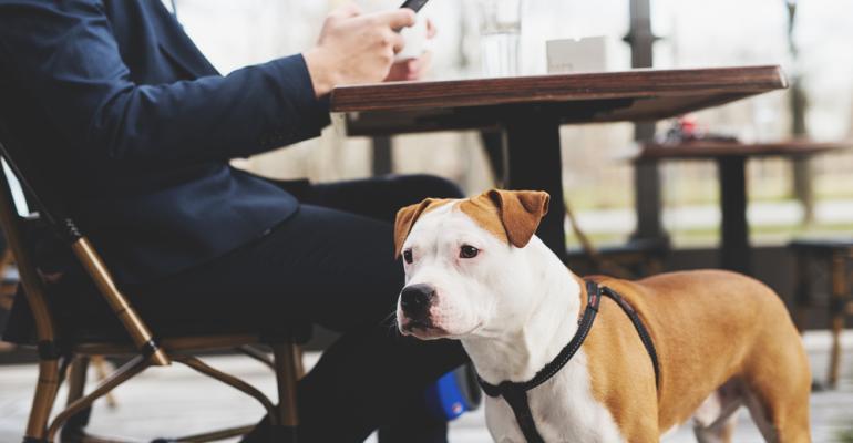 O-que-você-precisa-saber-para-receber-animais-de-estimação-no-seu- estabelecimento-FispalFood