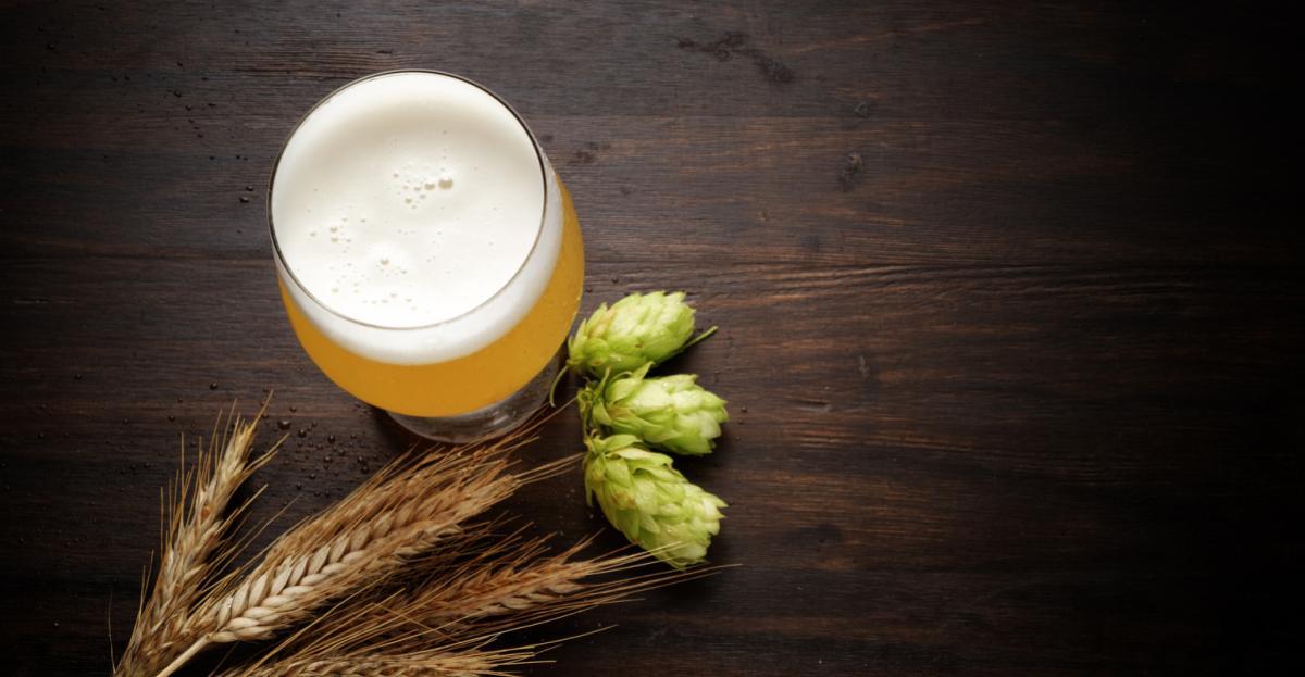 E-book: Guia da Indústria da cerveja artesanal